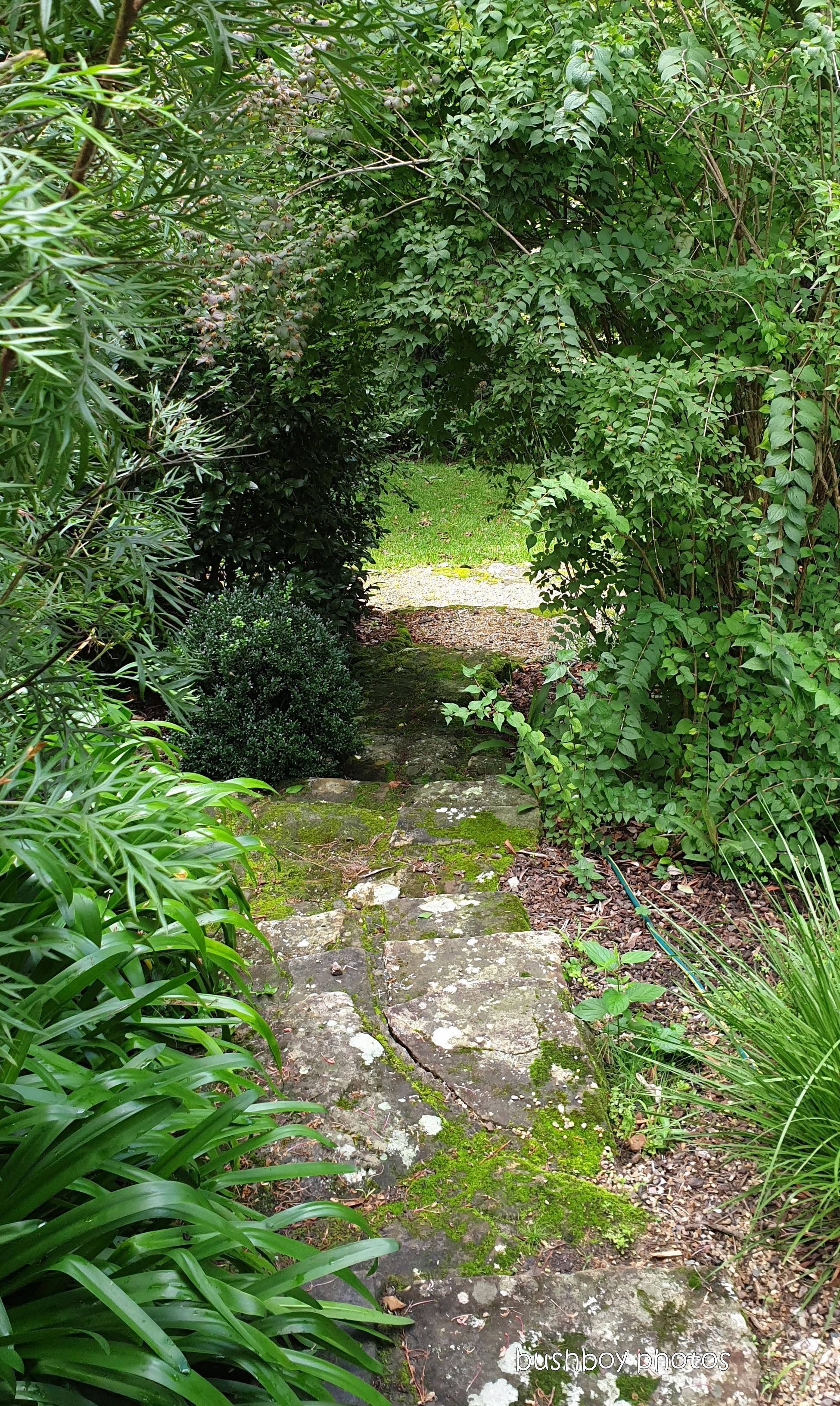 190410_blog_challenge_which_way_springwood_garden2