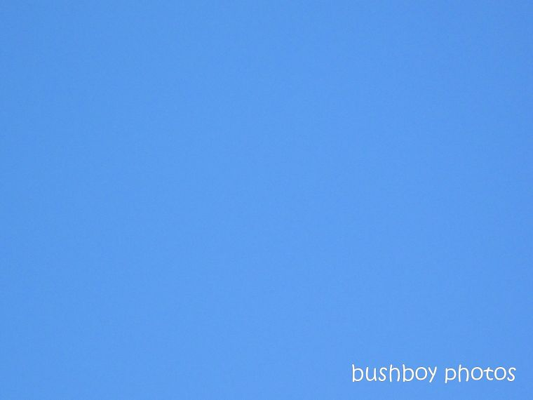 190411_blog_challenge_blue_sky