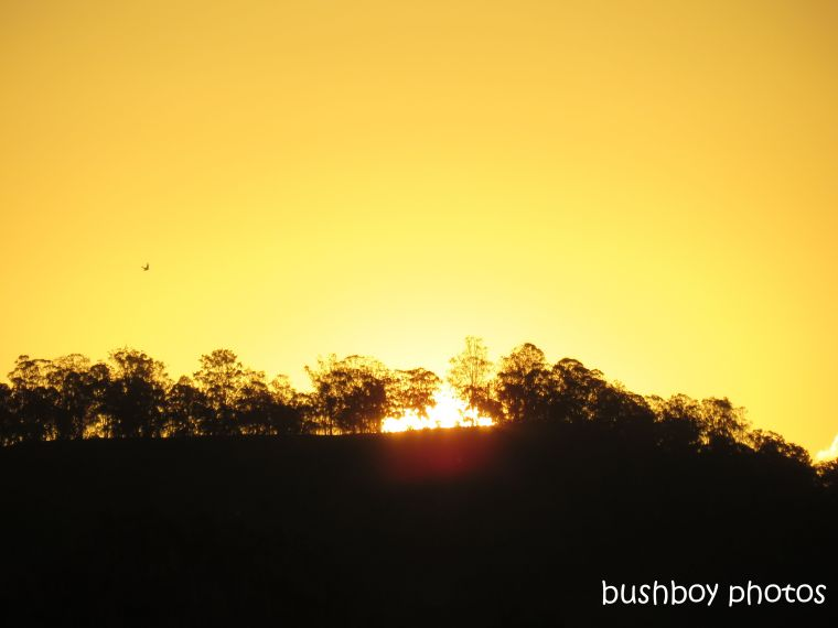 190411_blog_challenge_sunshine_caniaba