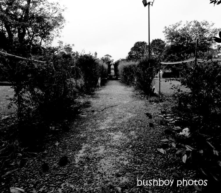 190419_blog_challenge_blackandwhite_vanishing_point_lindsay_garden_springwood1