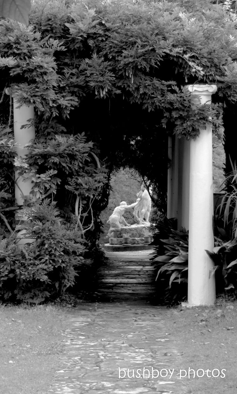 190419_blog_challenge_blackandwhite_vanishing_point_lindsay_garden_springwood2