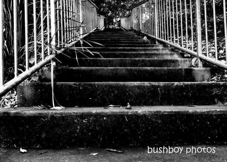 190419_blog_challenge_blackandwhite_vanishing_point_stairs_rocky_creek_dam