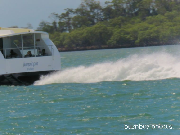 ferry_fast_named_macleay_island_march 2019