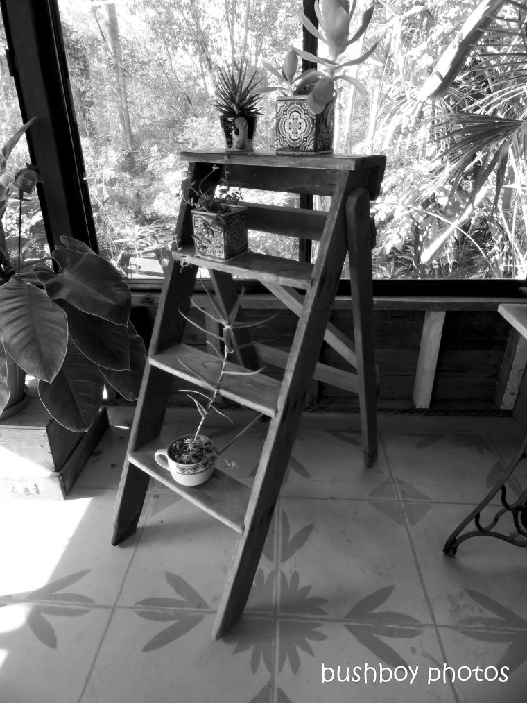 190510_blog_challenge_blackandwhite_ladder1