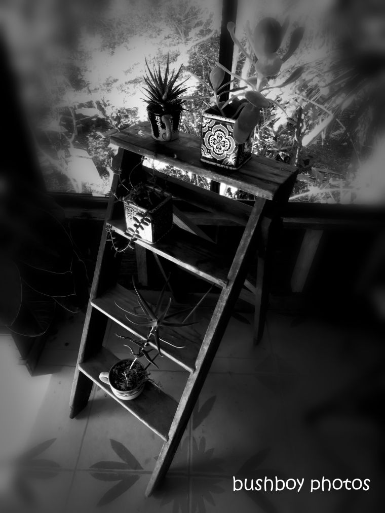 190510_blog_challenge_blackandwhite_ladder2