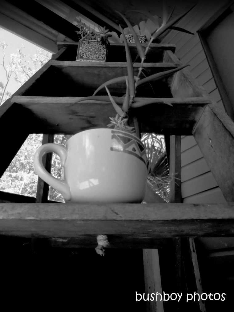 190510_blog_challenge_blackandwhite_ladder3