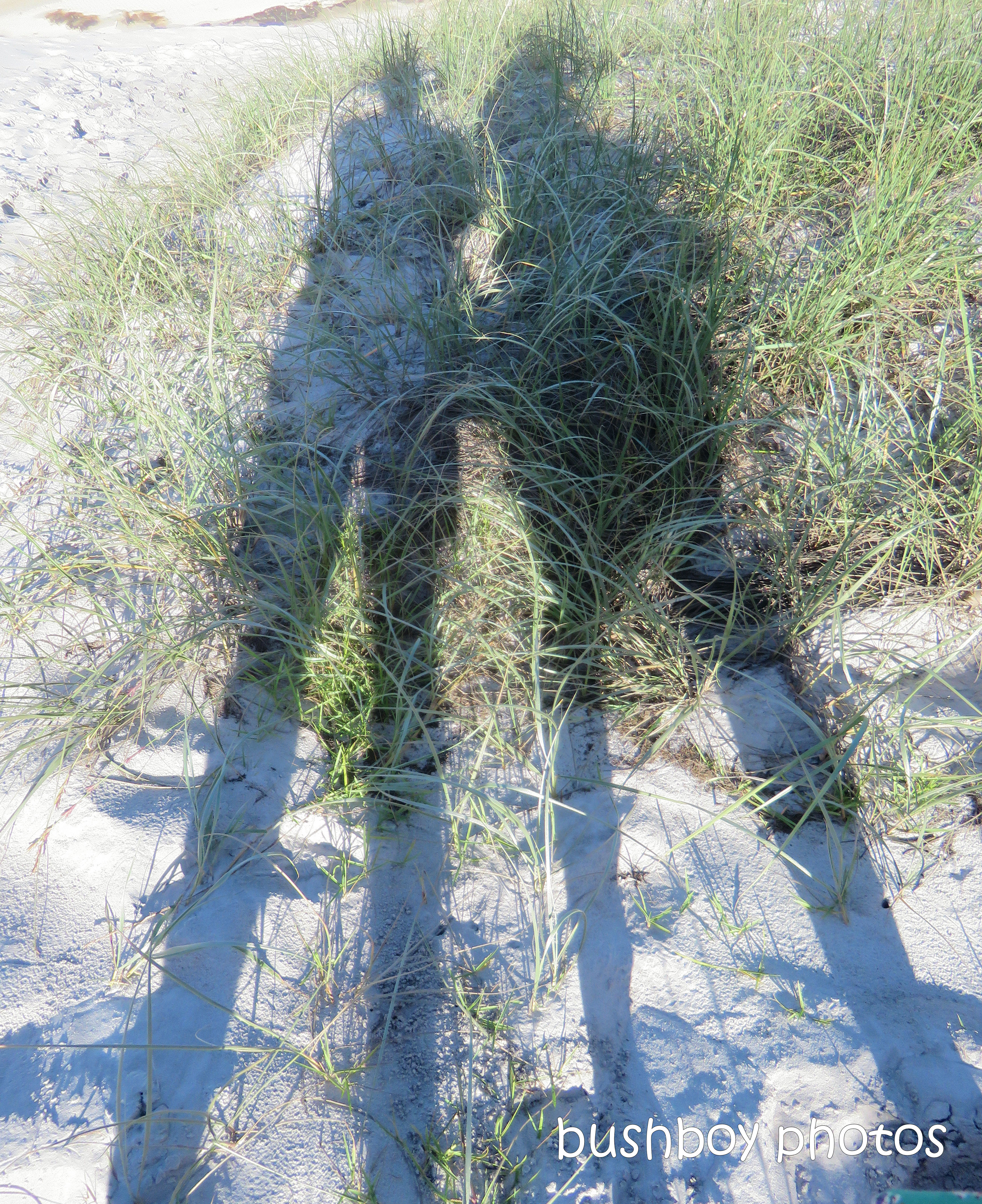 190607_blog_challenge_shadows_us