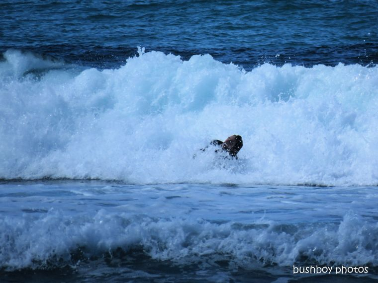 190607_blog_challenge_wave_surfer_caught