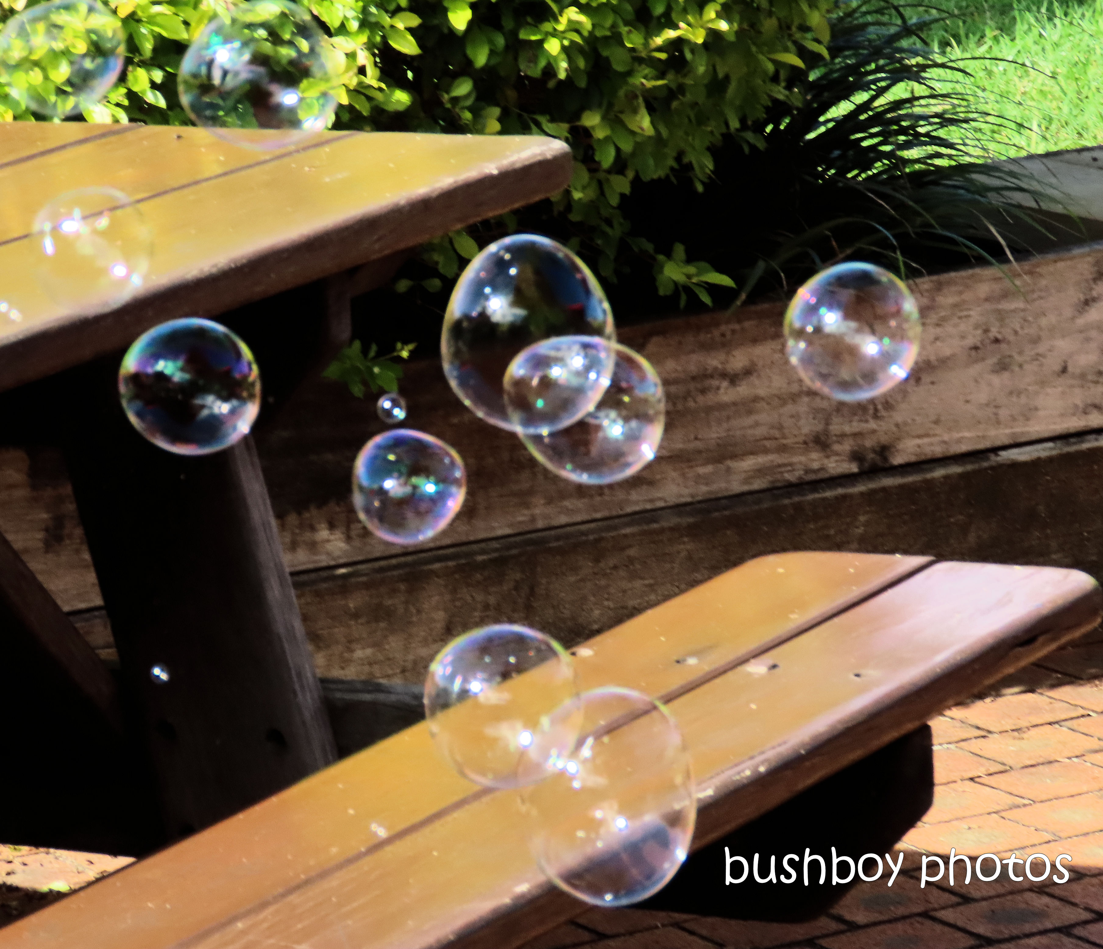 190609_blog_challenge_silent_sunday_bubbles