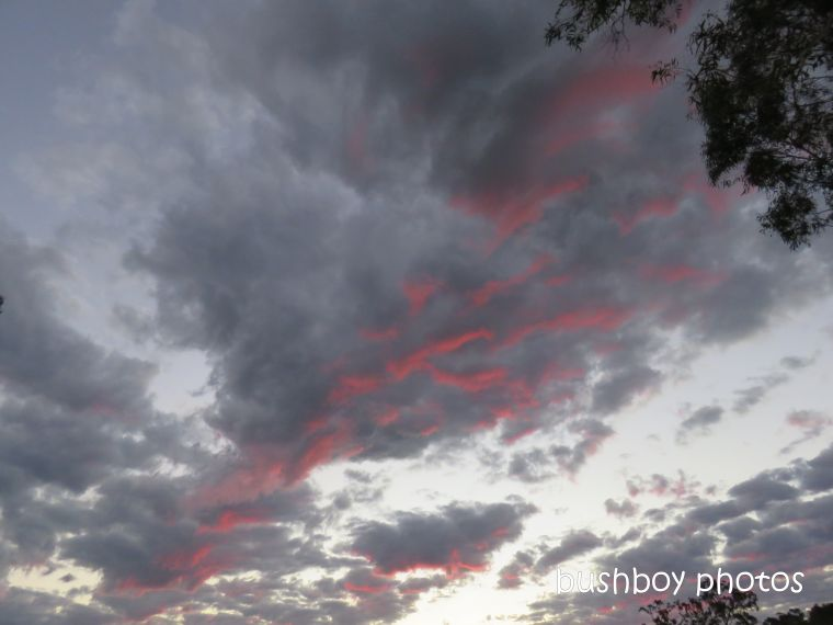 clouds_red_grey_named_caniaba_may 2019