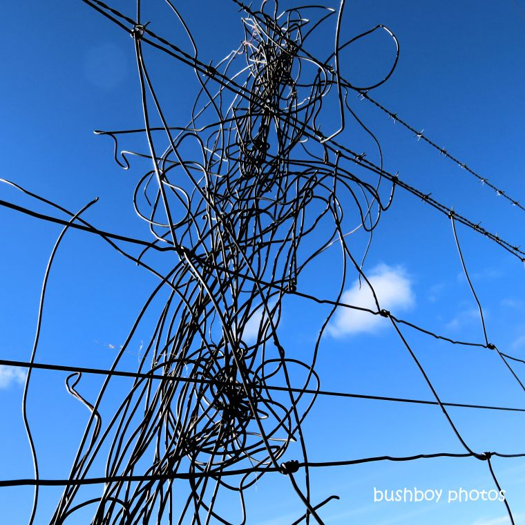 190701_blog_challenge_blue_tangled_wire