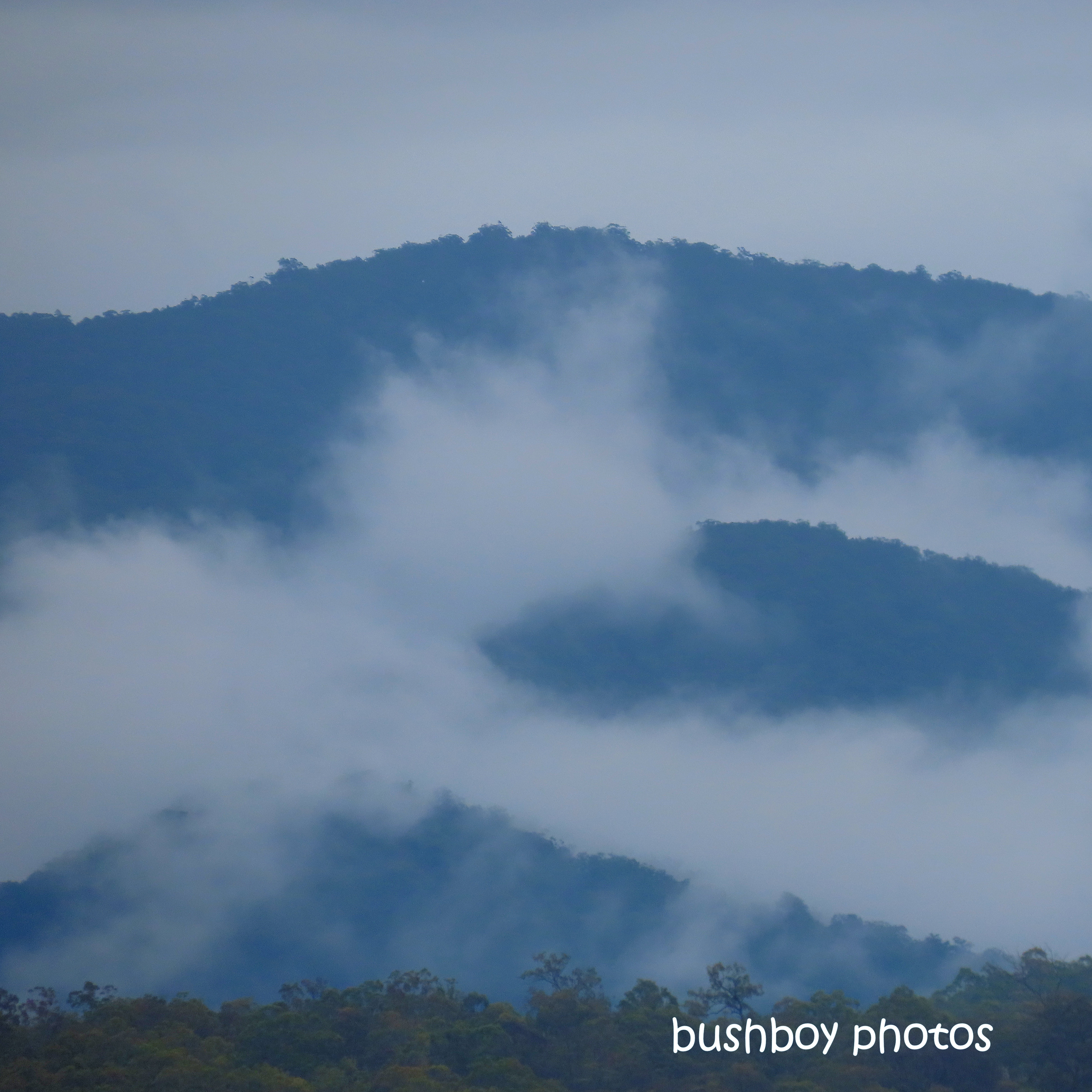190706_blog_challenge_blue_mountains_mist