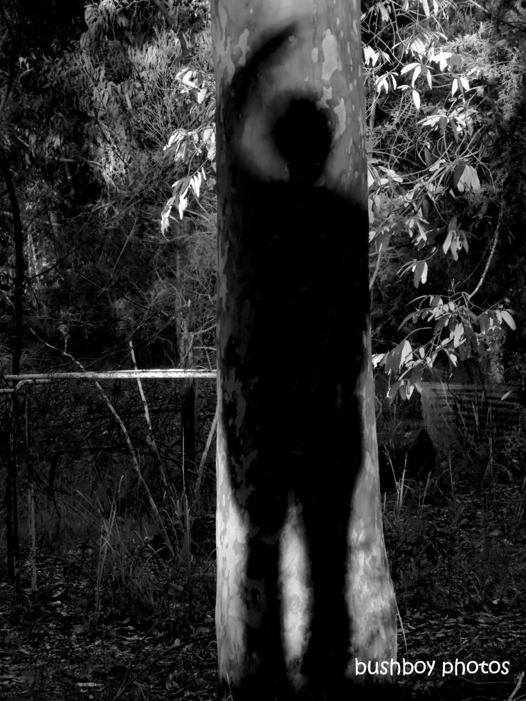 190712_blog_challenge_blackandwhite_shadows_tree_me1