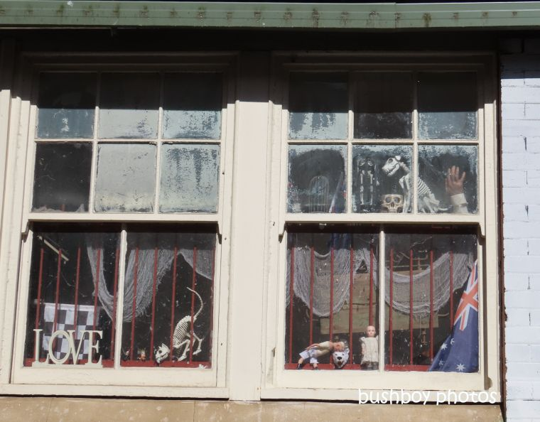eclectic_window_wierd_named_lismore_june 2019