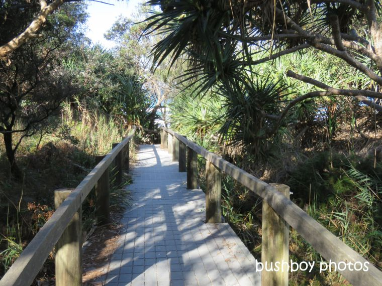 190801_blog_challenge_which_way_evans_head_walkway_beach1