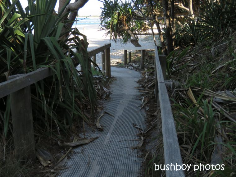 190801_blog_challenge_which_way_evans_head_walkway_beach6