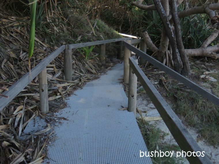 190801_blog_challenge_which_way_evans_head_walkway_beach7