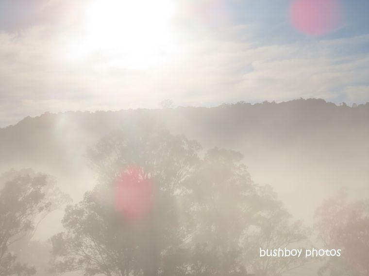 190807_wordless_wednesday_fog_caniaba