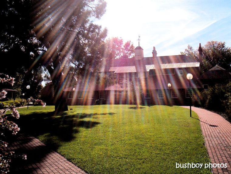 190811-blog-challenge-silent-sunday-bathurst_uni