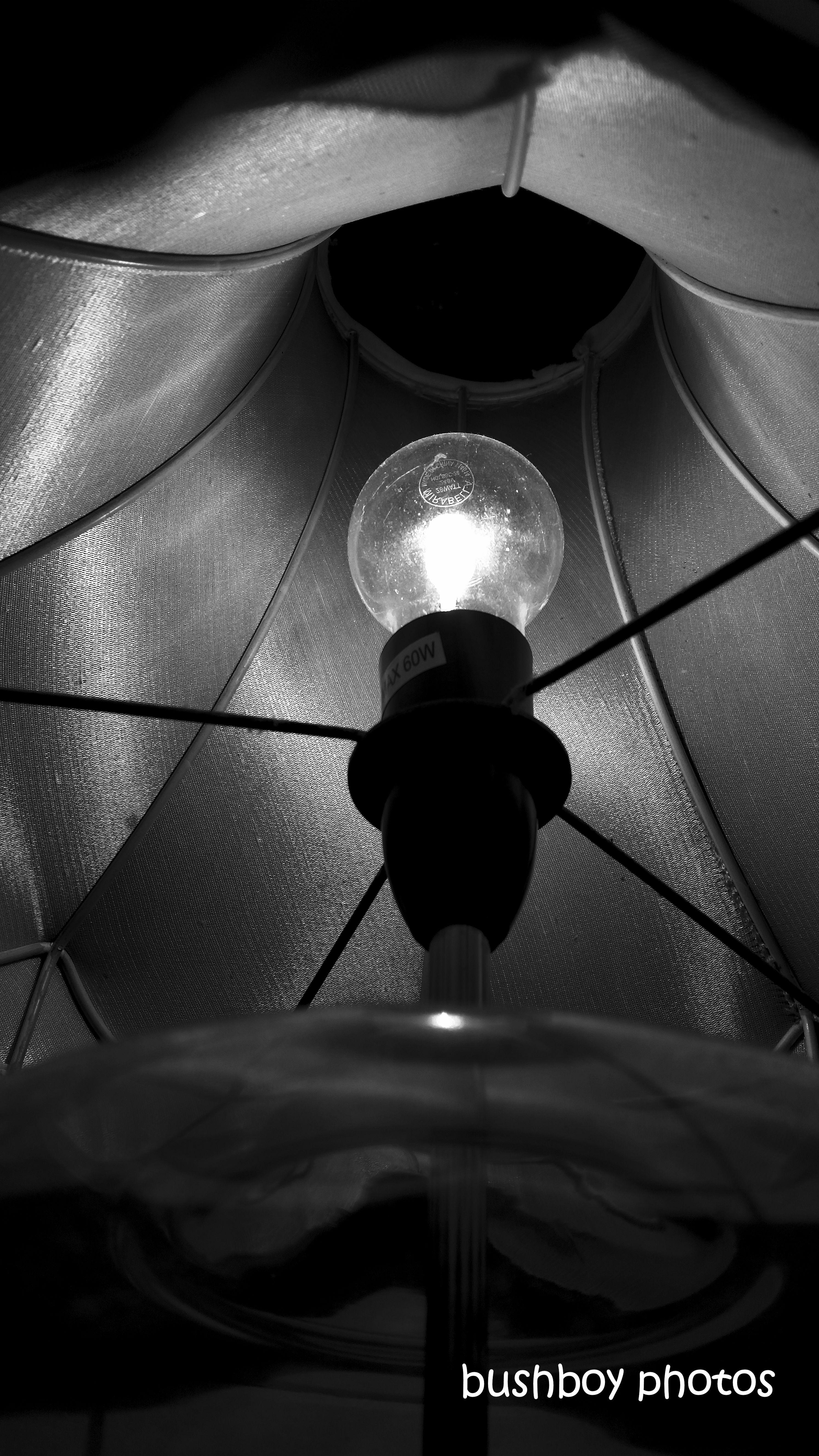 190812_blog_challenge_blackandwhite_lighting_lamp_shade