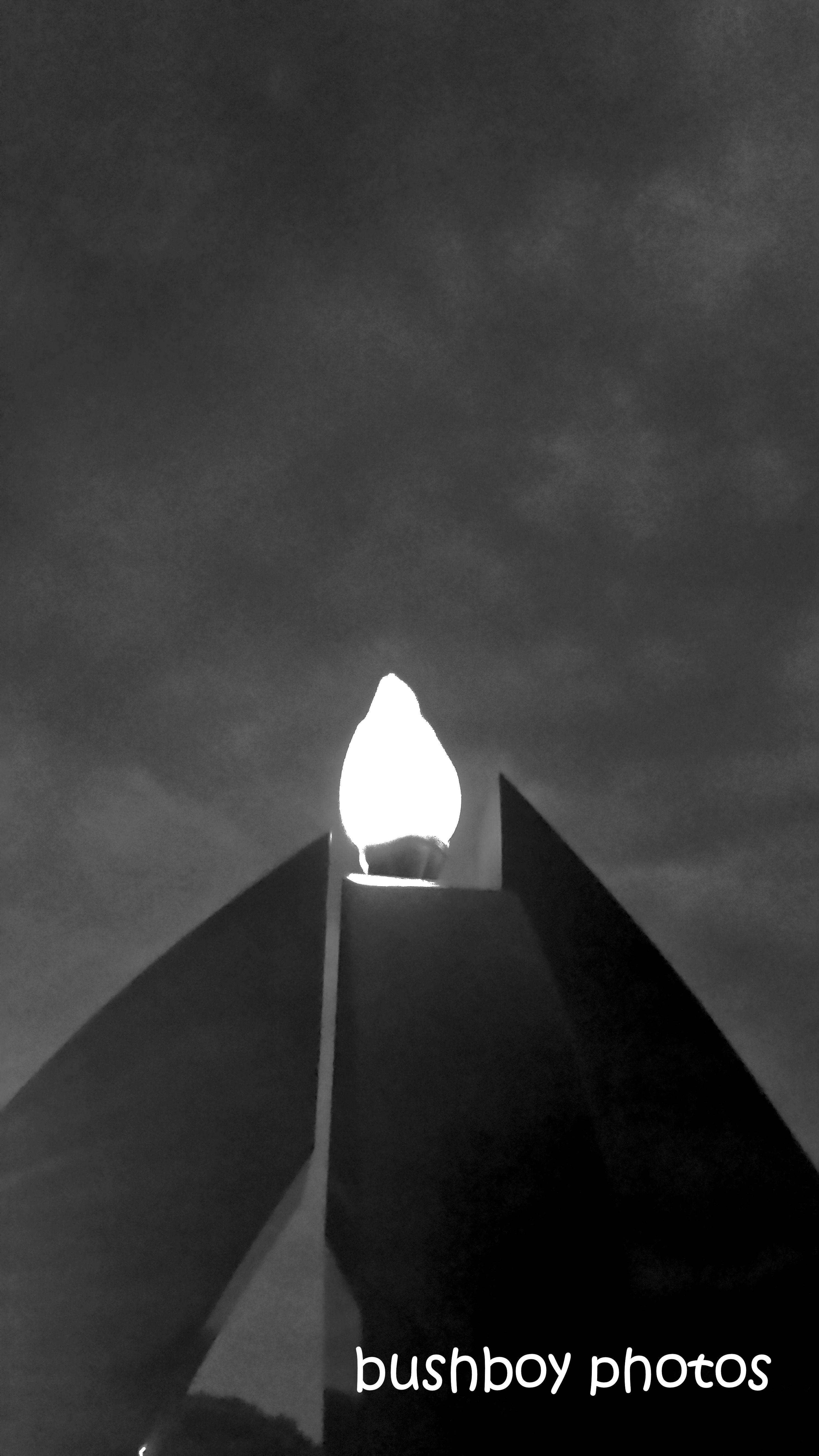 190812_blog_challenge_blackandwhite_lighting_light_memorial_ballina