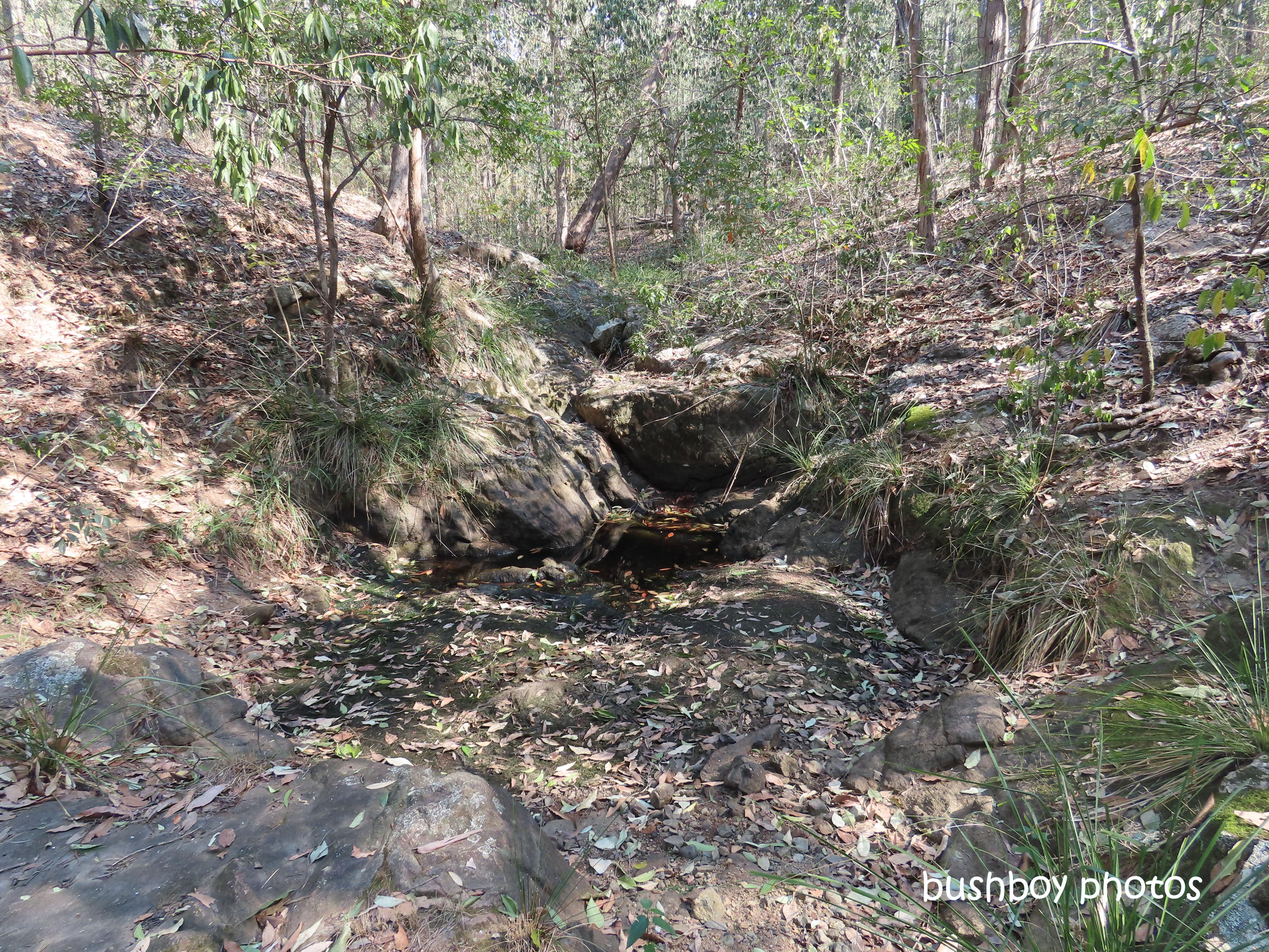 190816_blog_challenge_yellow_waterhole