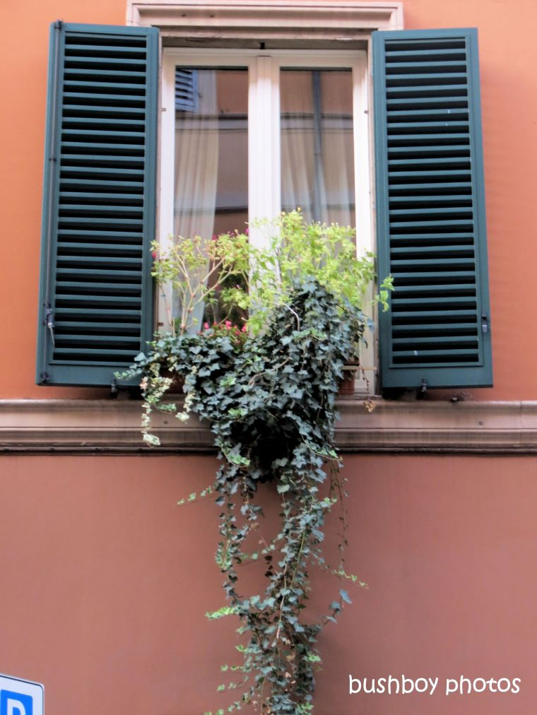 190825_blog_challenge_one_word_sunday_window_bologna