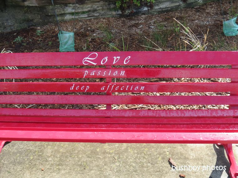 190826_blog_challenge_pick_a_word_connubial_bench_marriage