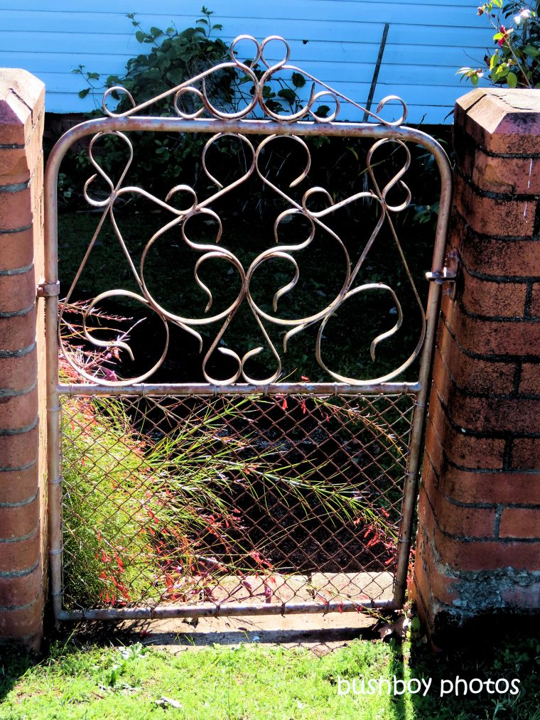 gate_named_kyogle_august 2019