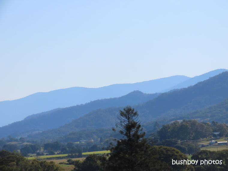 mountains_blue_layers_named_murwillumbah_august 2019