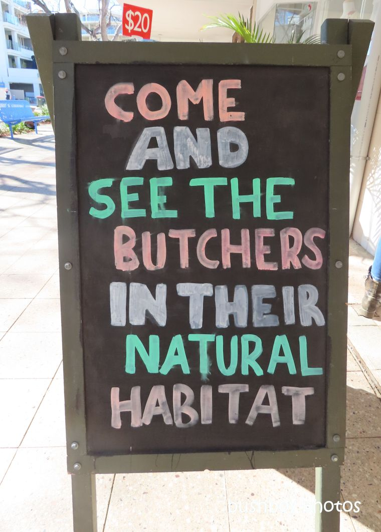 sign_butcher1_named_nelson bay_august 2019
