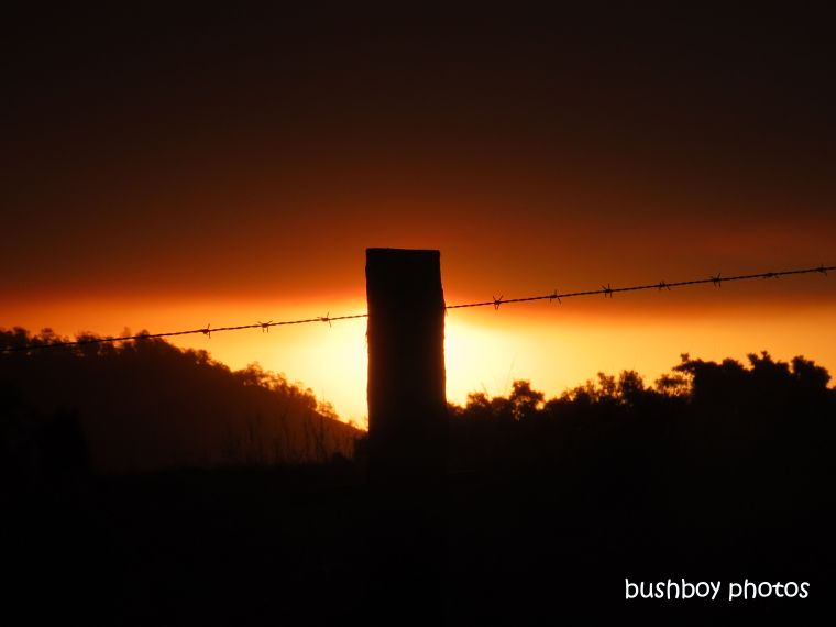 sun_sky_fence_post_sihouettte_sunset_fire_named_caniaba_sept 2019