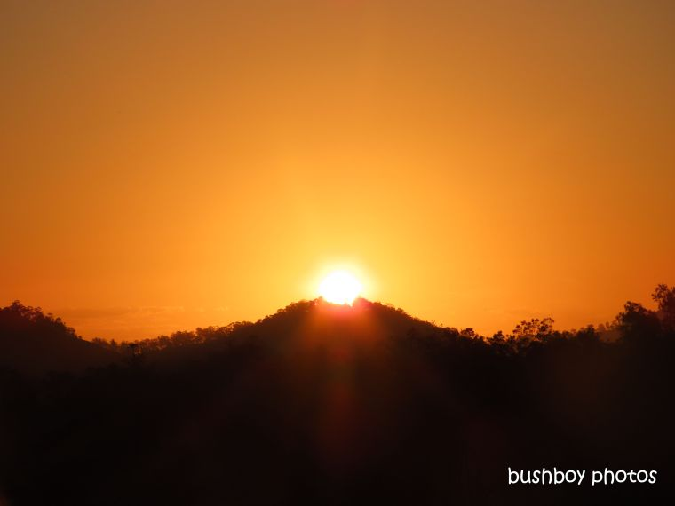 sunset_orange_named_caniaba_august 2019