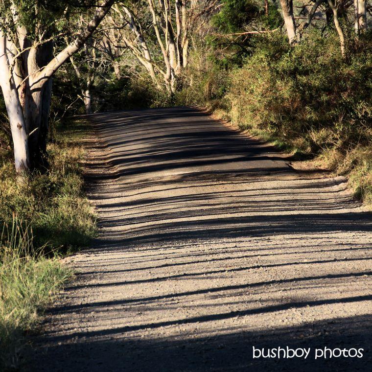 191003_blog_challenge_square_lines_road_shadows