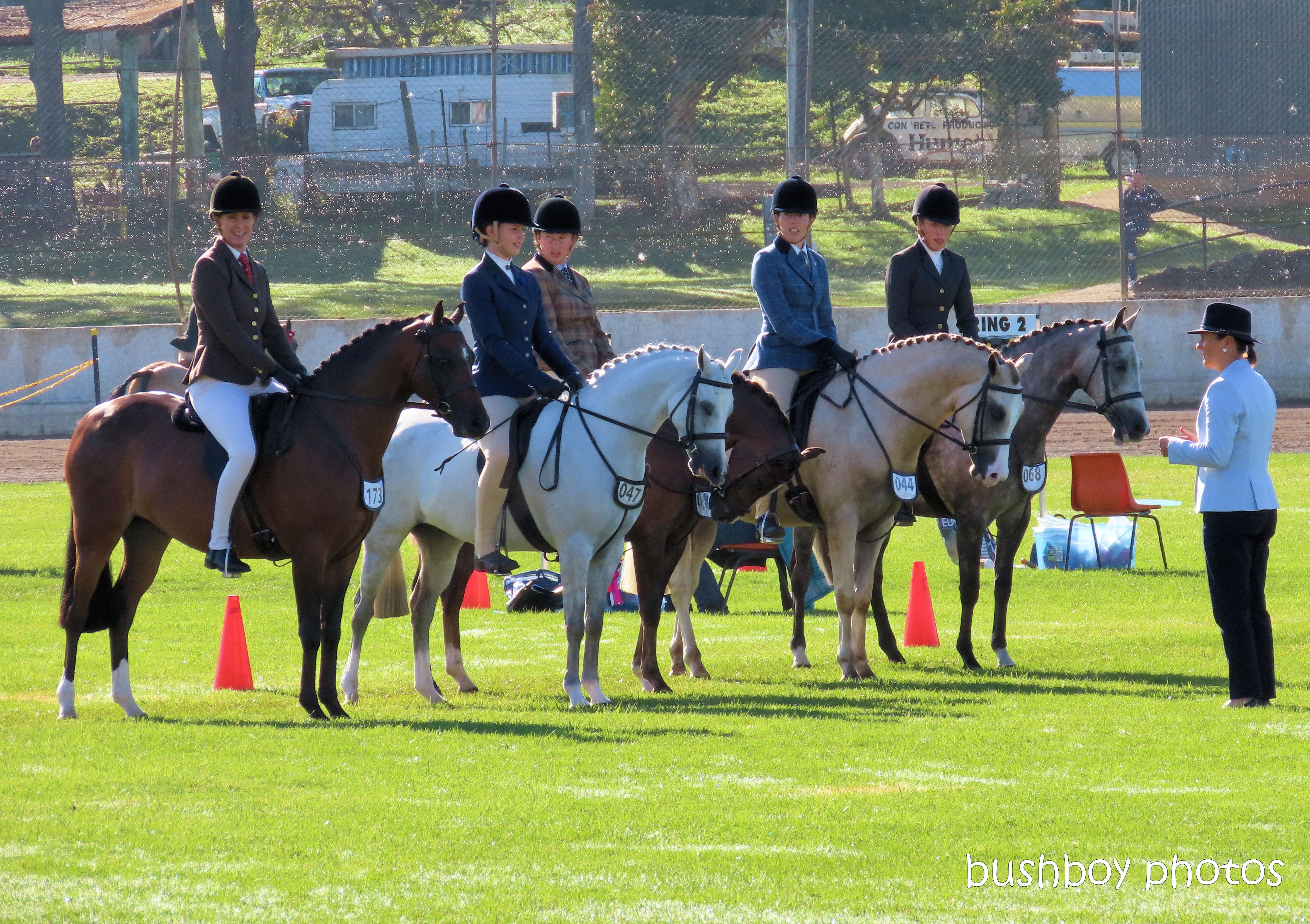 191004_blog_challenge_number_horse1