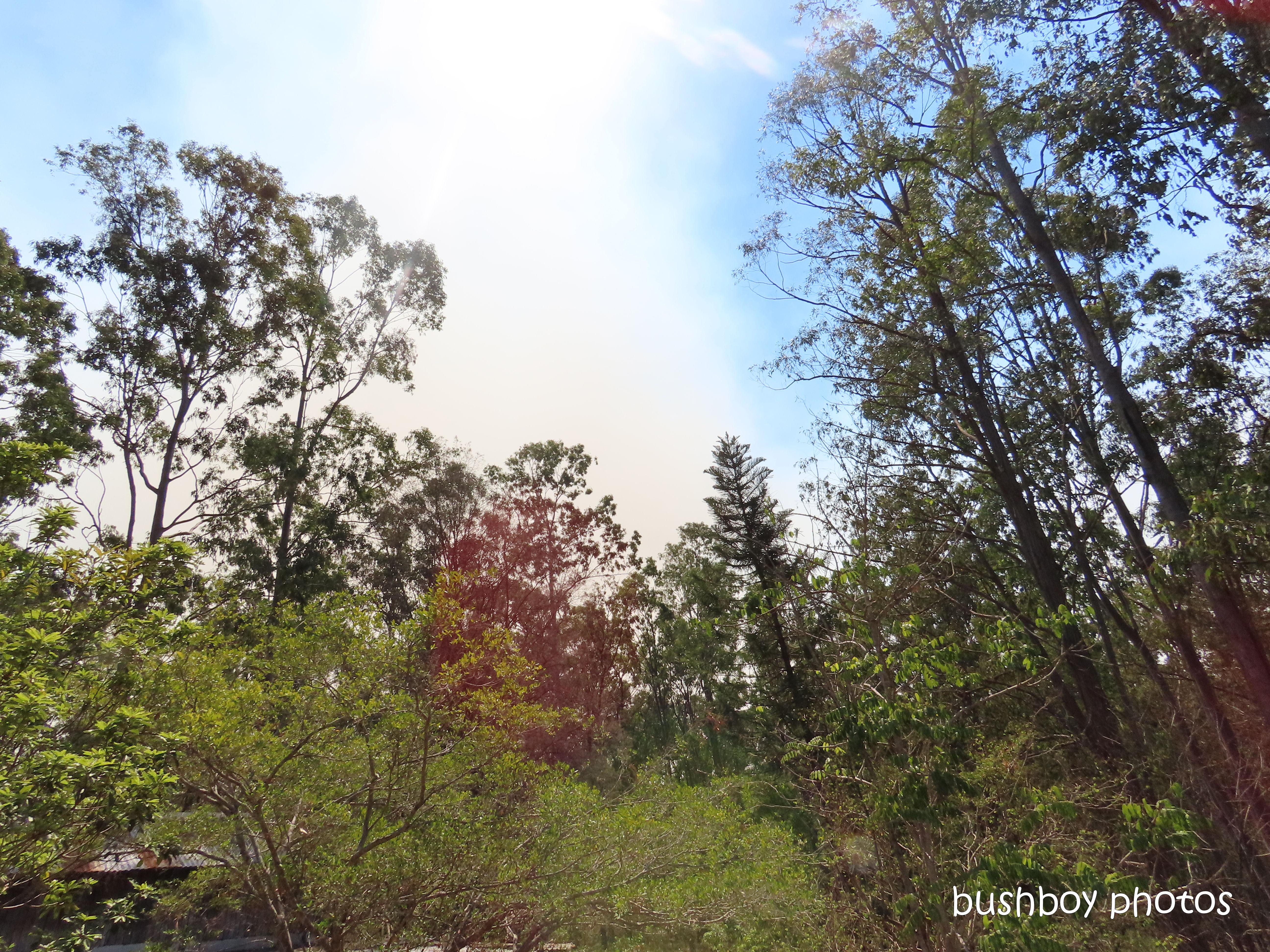 fire_smoke_named_home_jackadgery_oct 2019