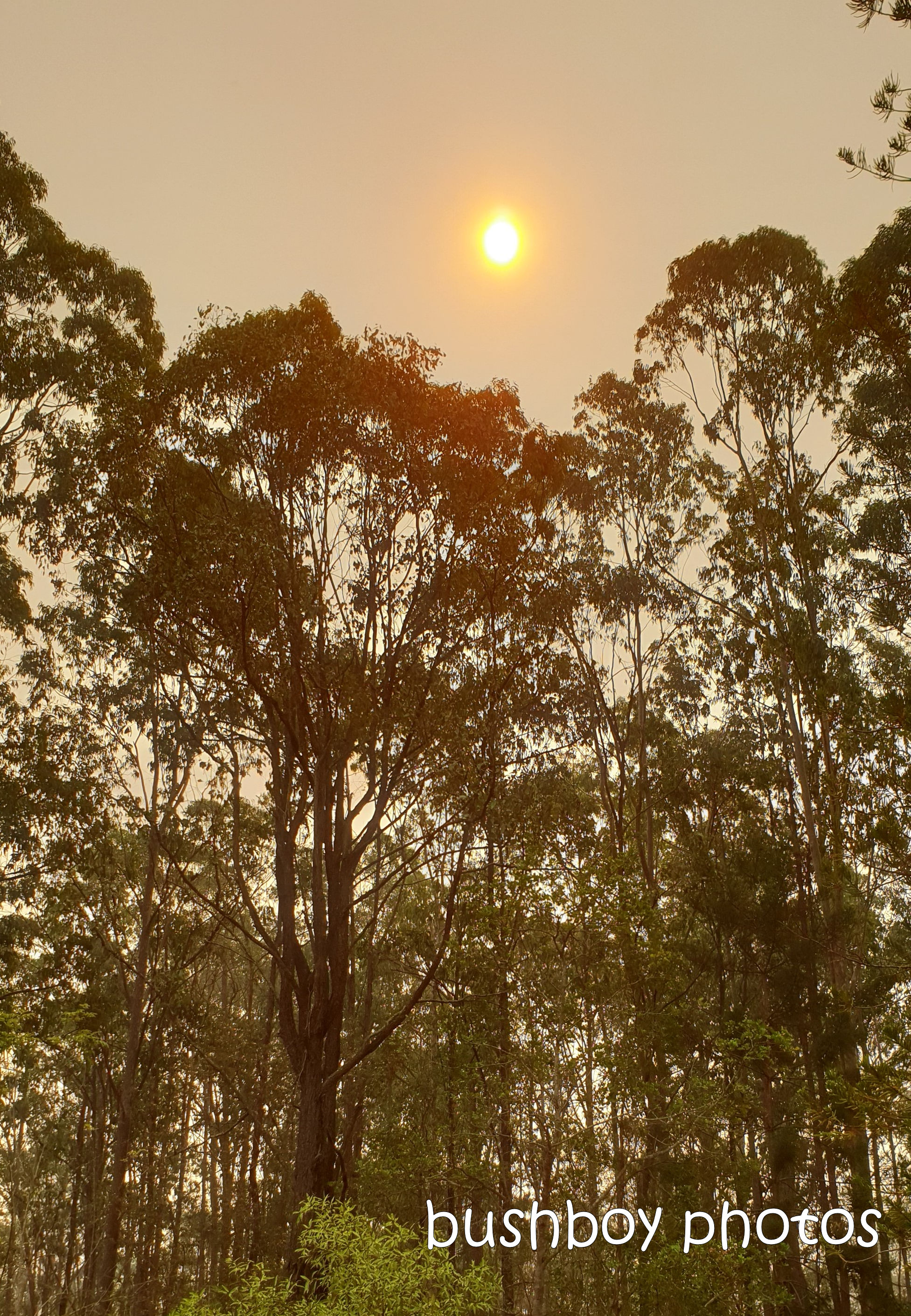 sun3_clouds_smoke_fire_named_home_jackadgery_oct 2019