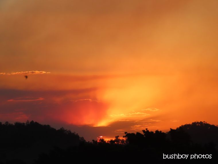 sunset_fires_orange_named_caniaba_sept 2019