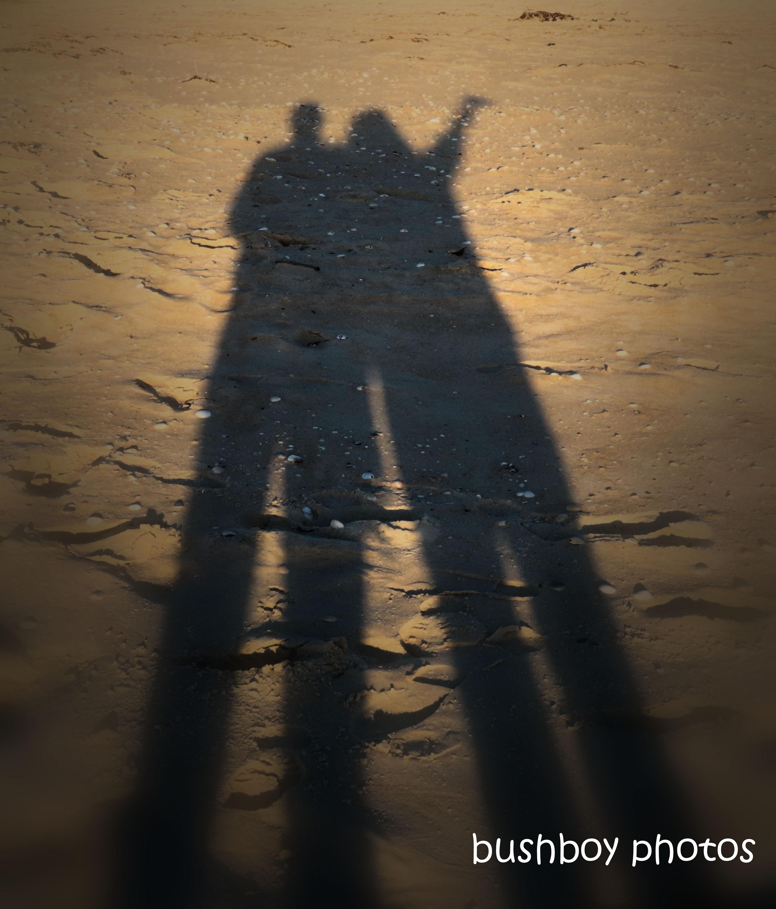 191128_blog_challenge_quote_shadow_kim_me_beach_tasmania