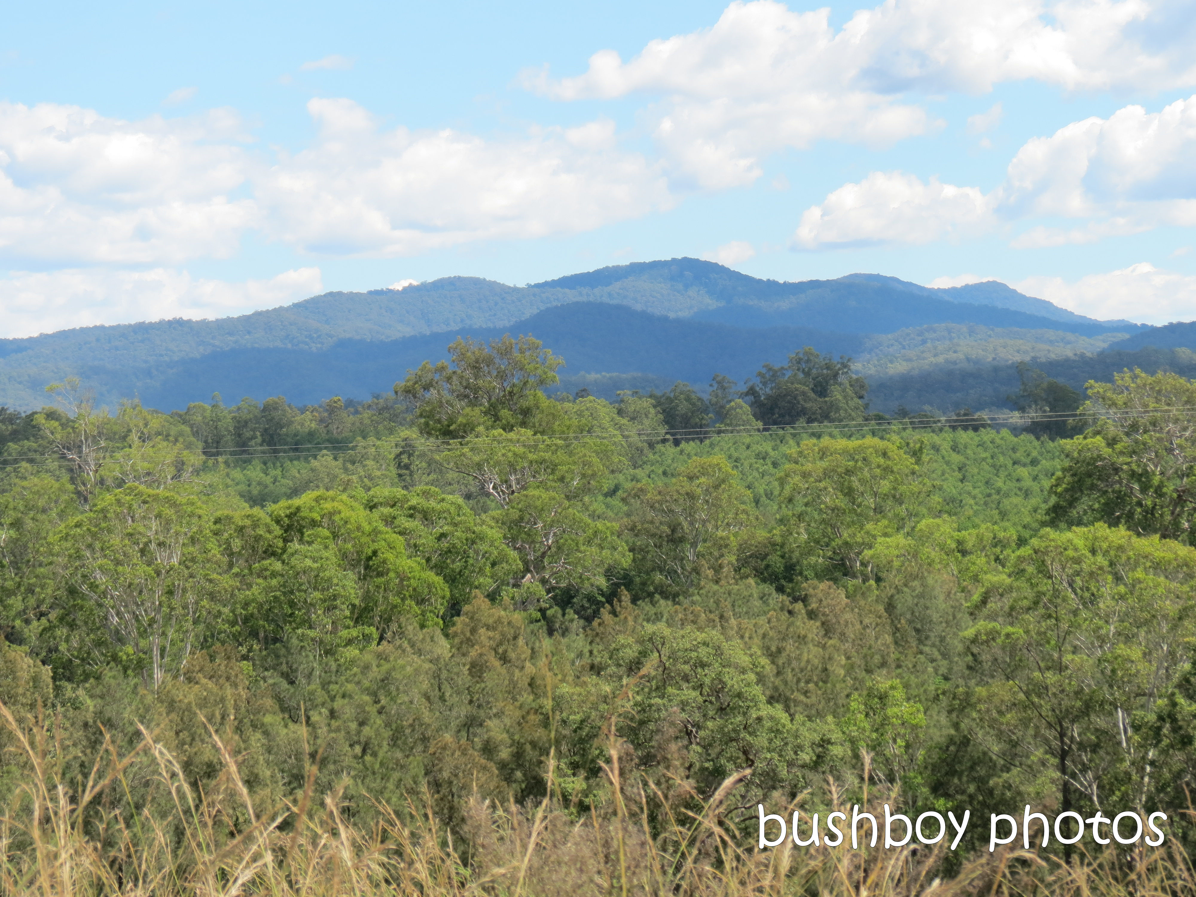 great dividing range_gwydir highway_named_march 2012