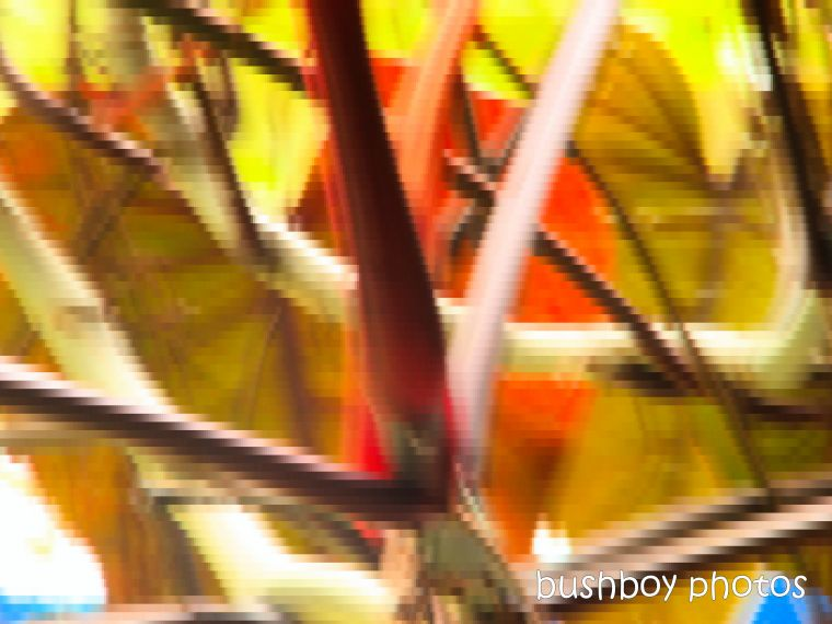191203_blog_challenge_abstract_branch_tree