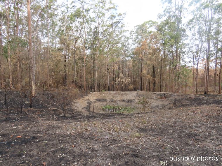 dam_burnt_durranbah_blog_fire_post_dec 2019