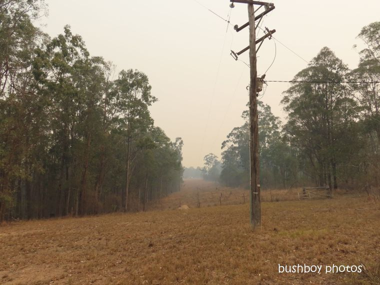 front powerline_durranbah_blog_fire_post_nov 2019