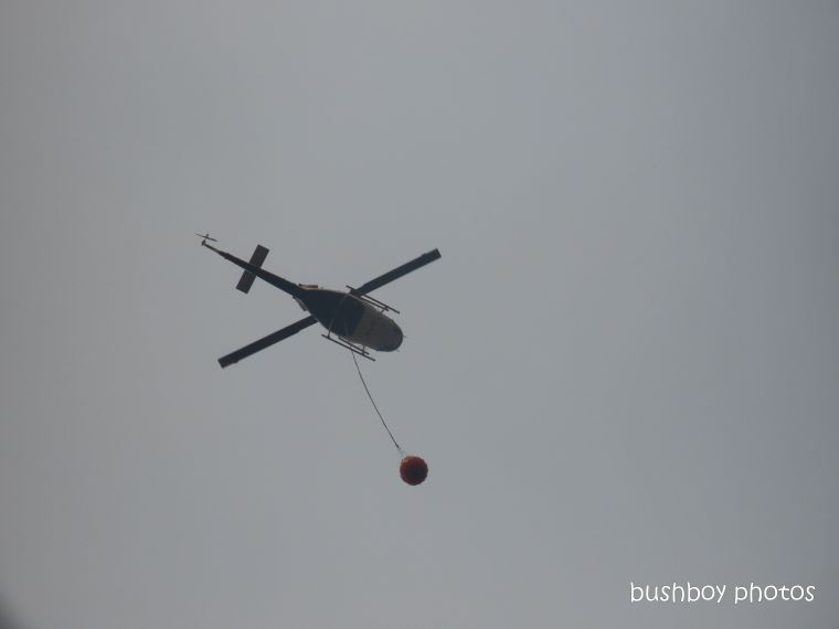 helicopter_close_durranbah_blog_fire_post_dec 2019