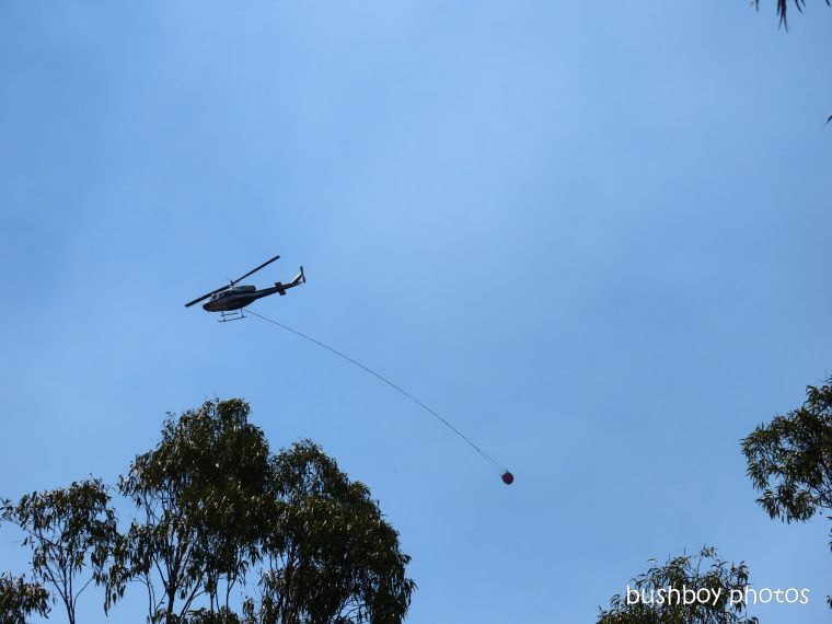 helicopter_water_close_durranbah_blog_fire_post_dec 2019