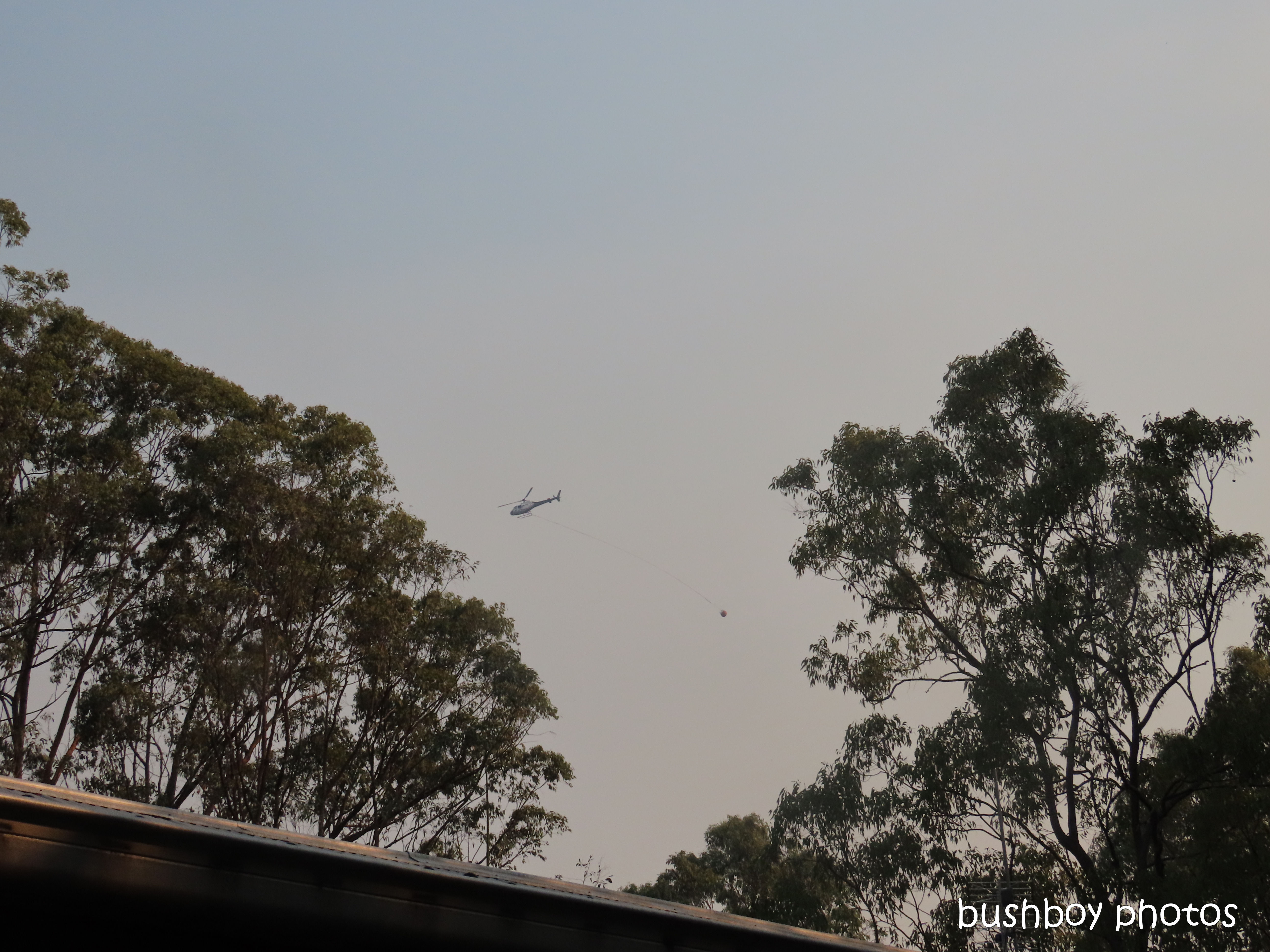 helicopter_water_durranbah_blog_fire_post_dec 2019