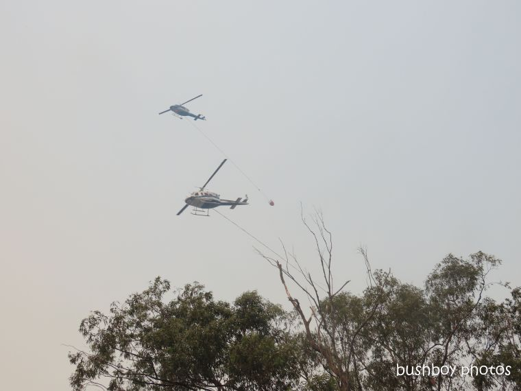 helicopters_two_durranbah_blog_fire_post_dec 2019
