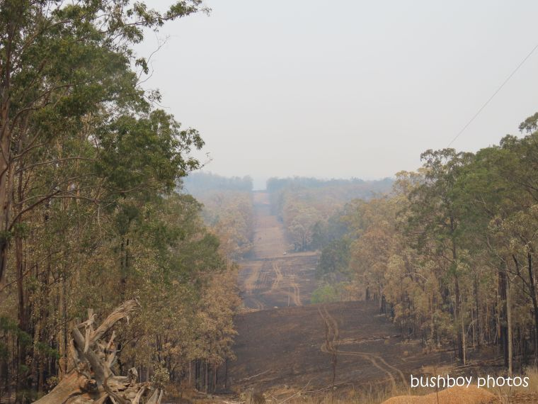 property_view4_lower_powerline_durranbah_blog_fire_post_dec 2019