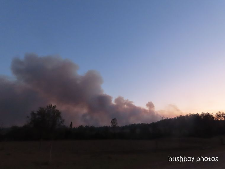 smoke_lilydale_durranbah_blog_fire_post_dec 2019