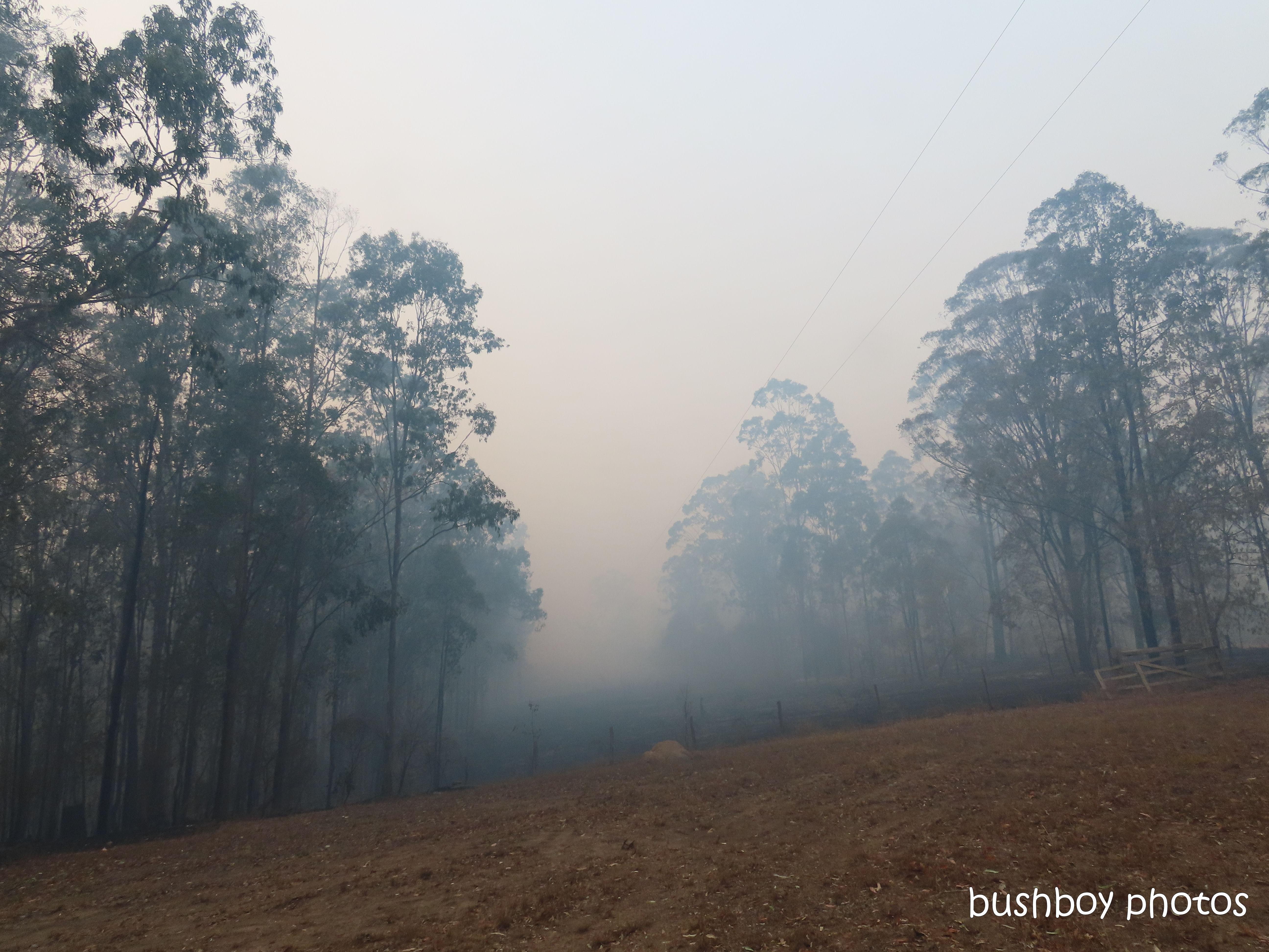 smoke_powerlines_durranbah_blog_fire_post_dec 2019